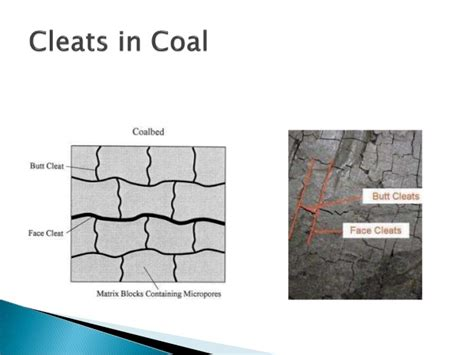 coal bed methane study of cbm coalbed methane production process