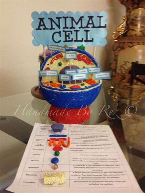 photo assignment themes animal cell project ideas for kids