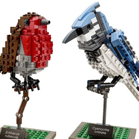 Lego Birds Set poulsom s lego birds now available as an official lego set colossal