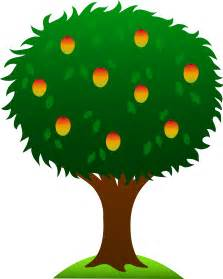 fruit tree clipart mango tree with ripe fruits free clip