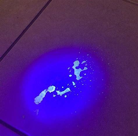 pet urine detector light pet urine detector ultraviolet blacklight flashlight by