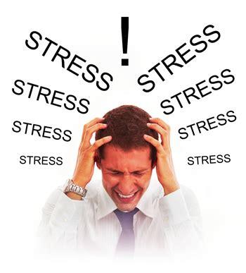 tudo sobre estresse