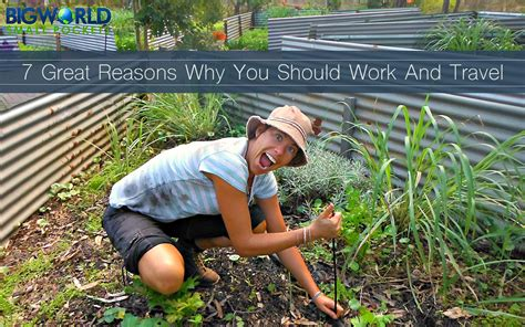 Will Work For Travel 7 great reasons why you should work and travel big world