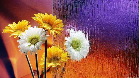 wallpaper flower full size flowers wallpapers for desktop full size hd