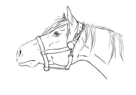 pattern horse drawing horse head line art horse head lineart by tnienjaa