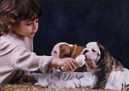 las mascotas al dedillo 849825759x la responsabilidad al cuidar mascotas hijos y padres blog de padresexpertos com
