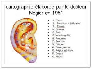carte de l oreille du dr nogier