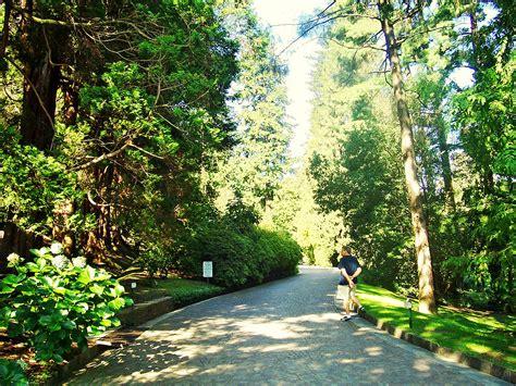 giardini botanici di villa taranto piemonte verbania i giardini botanici di villa taranto