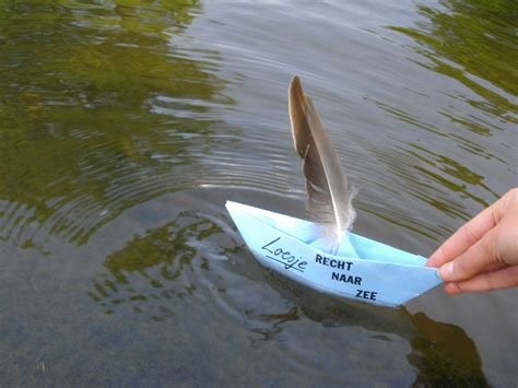 how do u make a paper boat paper boats and water lilies loesje international