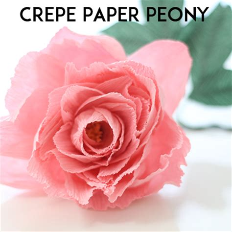 crepe paper peony ash and crafts