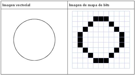 imagenes vectoriales para word c 243 mo vectorizar una imagen de manera sencilla sinlios