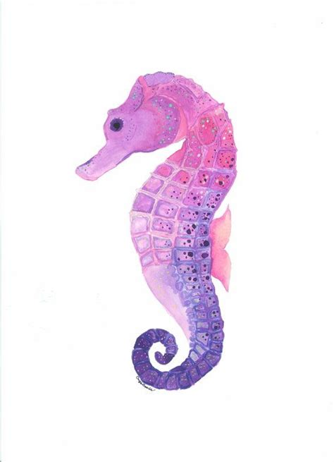 17 best ideas about seahorses on 25 best ideas about seahorse drawing on