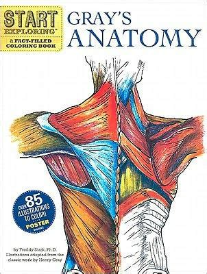 human anatomy coloring book barnes noble start exploring gray s anatomy a fact filled coloring