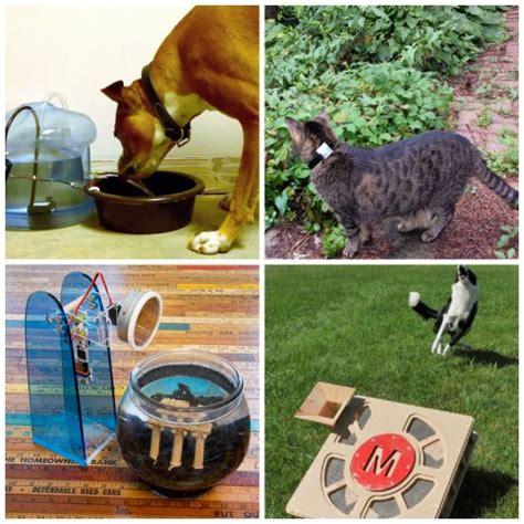 diy pit projects diy outdoor cat enclosure homestead survival