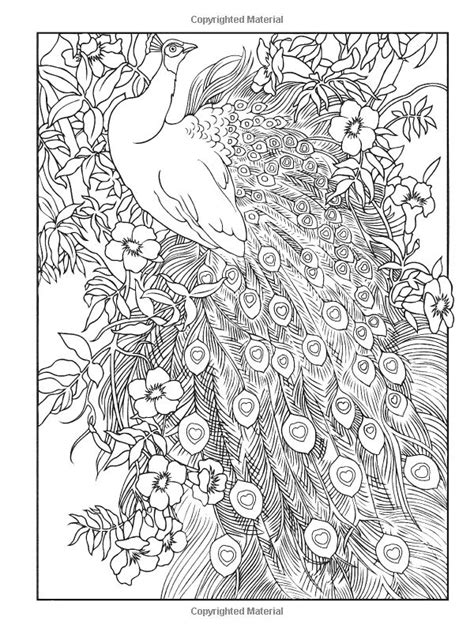 simply creative coloring book for adults books creative peacock designs coloring book creative