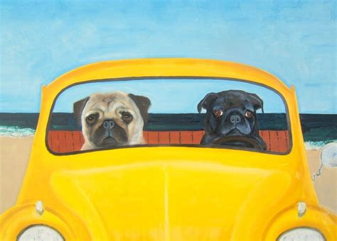 pugs in a bug 2 pugs in vw bug beetle bug