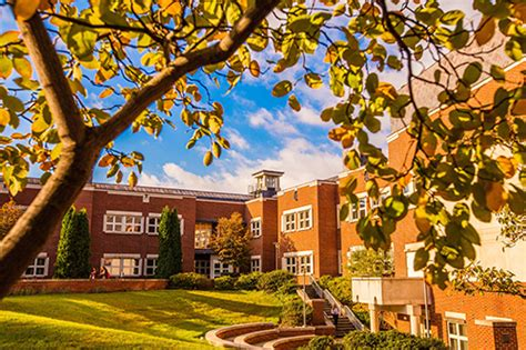 Geneseo Mba by School Of Business Earns Extension Of Aacsb Accreditation