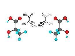 acido lattico alimentare cos 232 l acido lattico santucci running