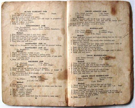 cookbook delicious family recipes books my gran s cookbook shaking the tree