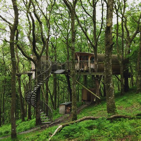 treehouse experience uk my treehouse adventure in wales footsteps on the