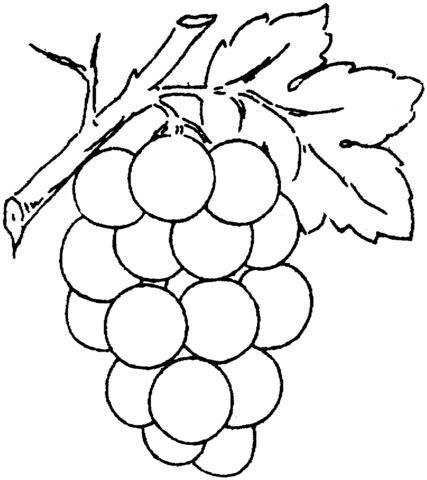 kolorowanka czerwone winogrona kolorowanki dla dzieci do