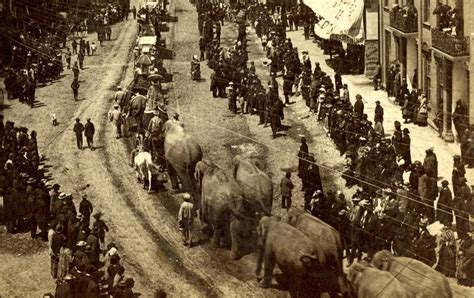Seeking Michigan Records Search Michigan Circus History Tidbits 171 Seeking Michigan