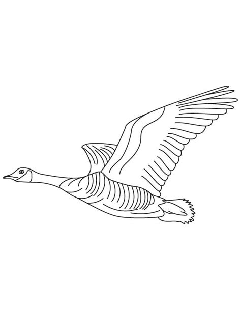 Domestic Goose Flying Coloring Page | Download Free ...