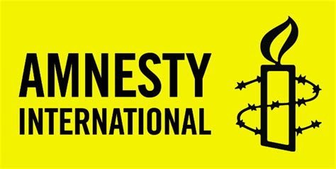 international islamic and human rights can they get along books amnesty international social media for development