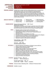 Business Resume Template by Business Resumes Template Resume Builder