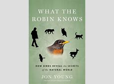 Book Review: What the Robin Knows | Root Simple Language Awareness