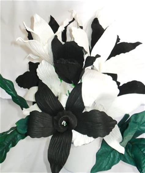 imagenes orquideas negras orquideas negras fotos