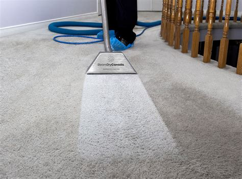 carpet and upholstery cleaning toronto carpet cleaning in richmond hill ontario thecarpets co