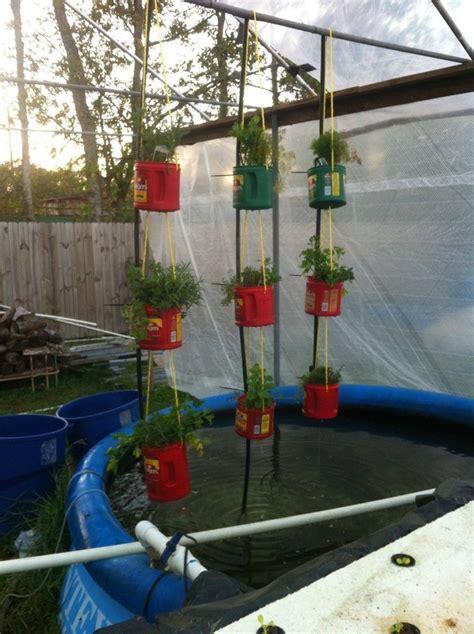 backyard hydroponic garden 17 best images about diy aquaponics on pinterest gardens
