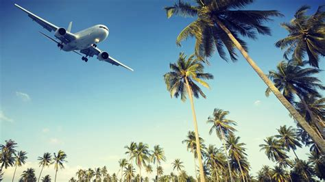 find your student flight tickets here student benefits