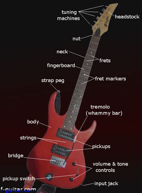 electric guitar parts diagram string finger numbering