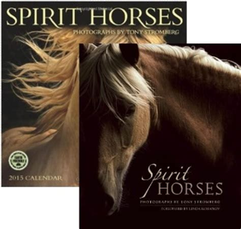 twenty horses books tony stromberg spirit horses book calendar bundle