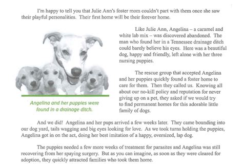 Fundraising Letter For Animal Shelter 5 easy copywriting tactics to from fundraising pros