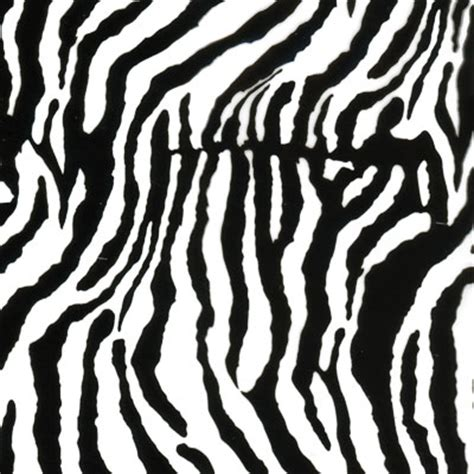 zebra pattern filming zebra print pattern pack deco dip