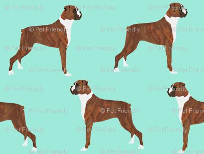 fabric crafts for dogs boxer dogs boxer pet dogs boxer fabric