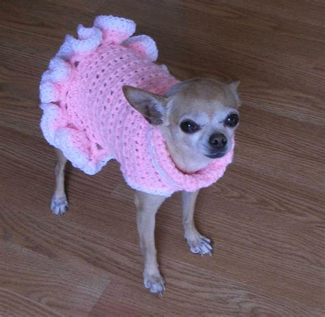 free patterns for dog sweaters to crochet crochet dog sweater free pattern easy squareone for