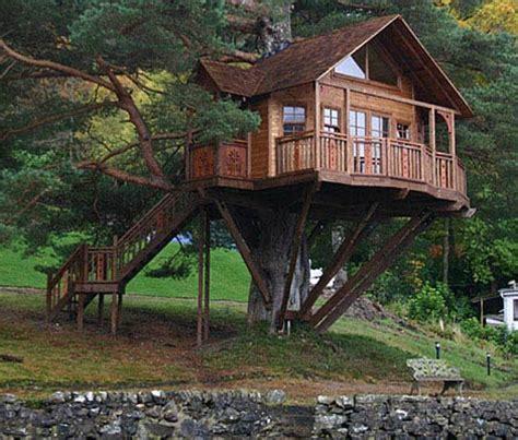 Ordinary Dog Friendly Luxury Resorts #5: 14+tree-house_all-hit-movies.blogspot.in.jpg