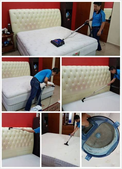 professionally clean couch how to get rid of dust mites recommend living