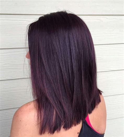 black hair color the gallery for gt brown purple tint hair color