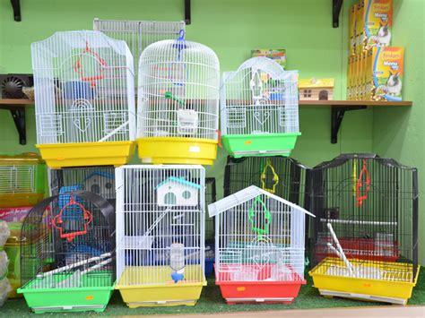 gabbie usate per uccelli gabbie per uccelli dovemiconviene it