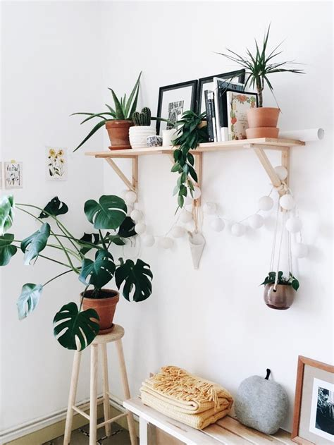 indoor home decor best 25 plant shelves ideas on pinterest plant ladder