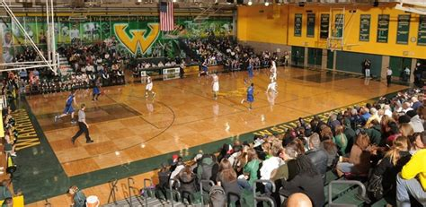 wayne state basketball camps