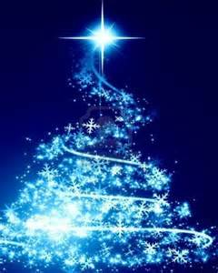 Collection blue and white christmas trees pictures amazows