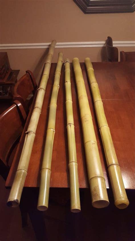 best didgeridoo best 20 didgeridoo ideas on aboriginal