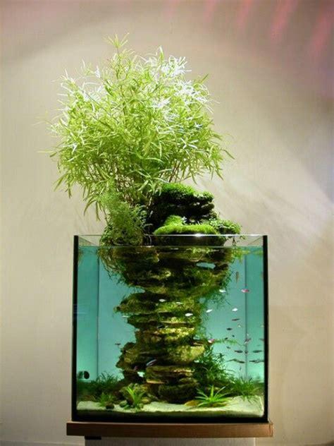 best 25 betta tank ideas on betta aquarium