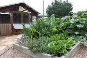 vegetable garden melbourne organic vegetable gardens chicken coops gardens melbourne